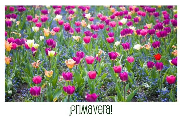 primaverath