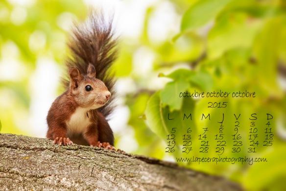 CalendarioOctubre2015