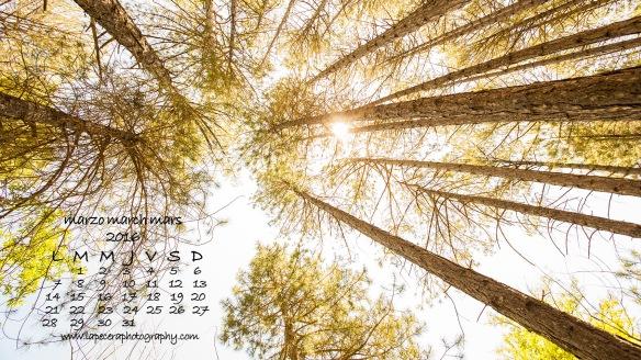 calendariomarzo2016_1080