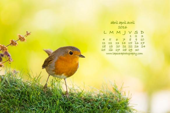 CalendarioAbril2016