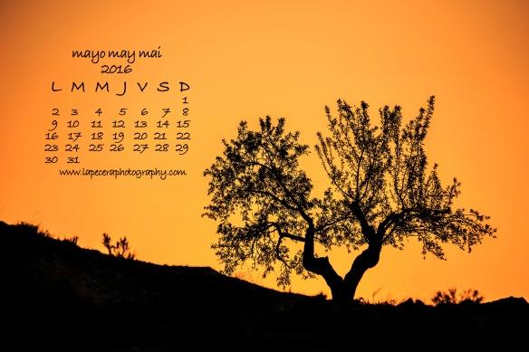 calendarioMayo2016