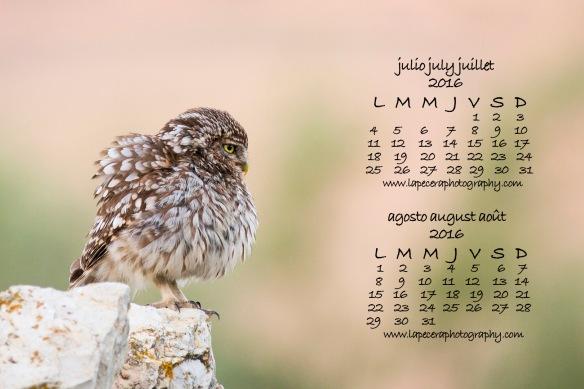 CalendarioJulioAgosto2016