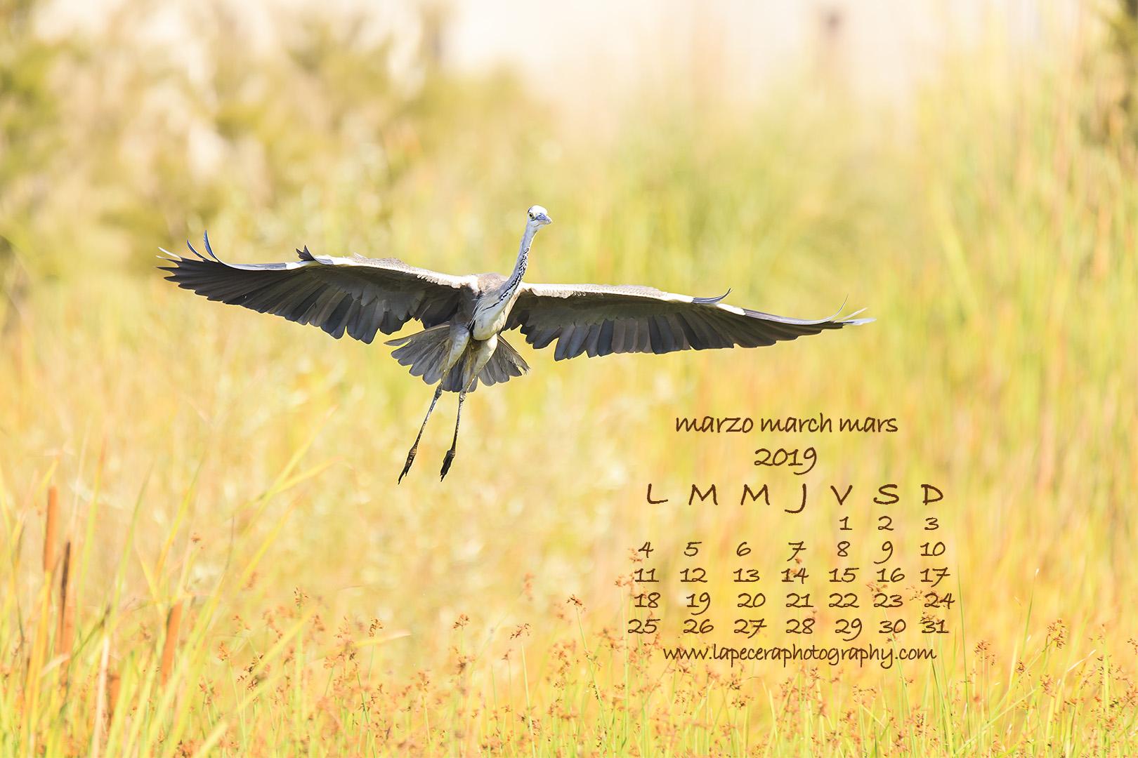 CalendarioMarzo2019